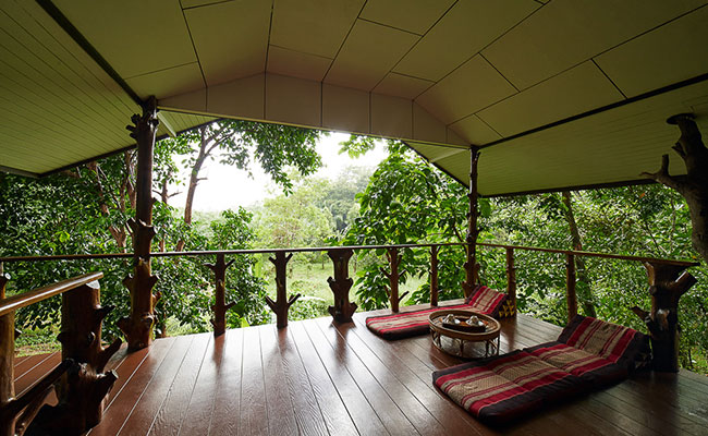 jungle-deluxe-tree-house2