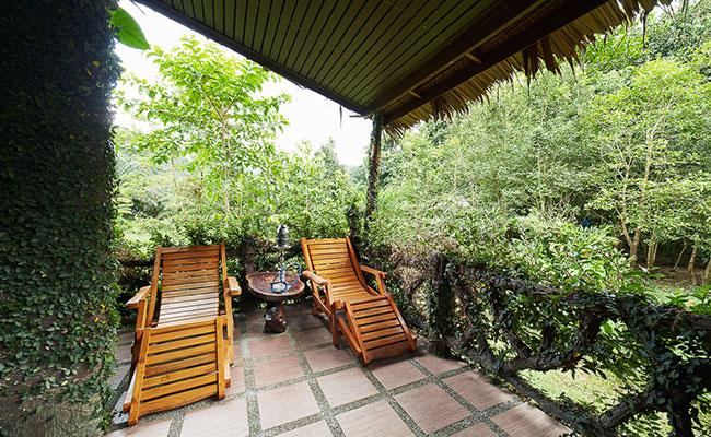 tree-hut2